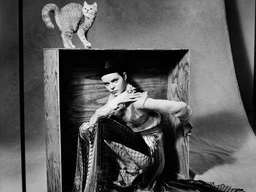 Fotoshooting: Frau hockt in Kiste, Katze steht auf der Kiste